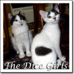 Cat Pictures Dice Girls