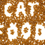 Cat Food